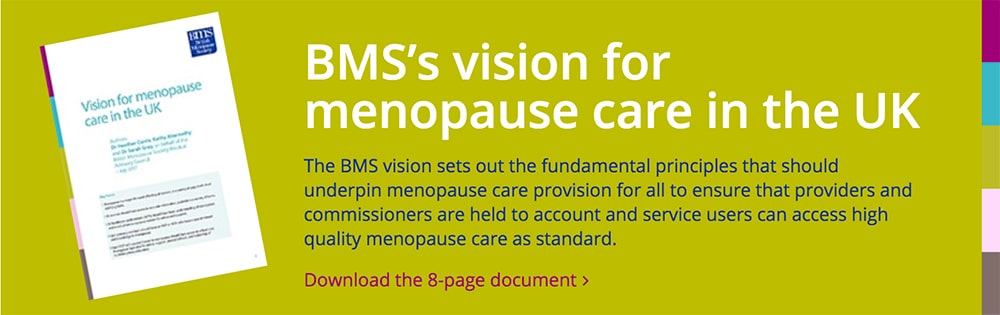 BMS vision download